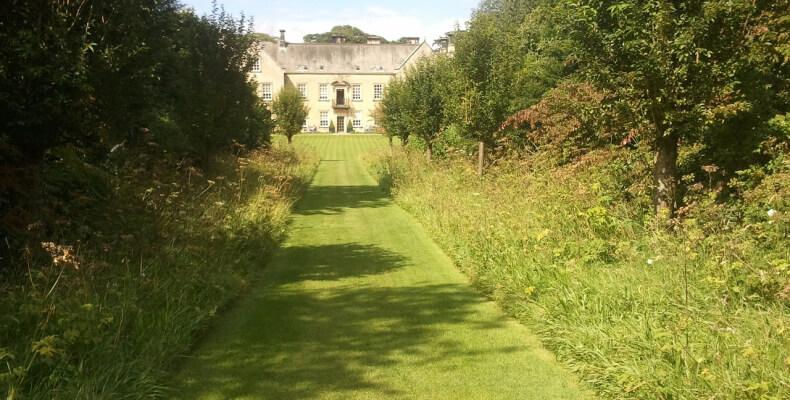 Poradnik ogrodnika - jak zaplanować ogród, aby był pełen harmonii?