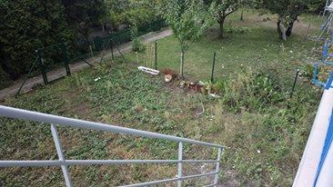 Ogród przy bloku z wielkiej płyty - przed realizacją