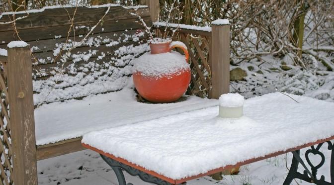 Luty w ogrodzie - jakie prace należy wykonać?