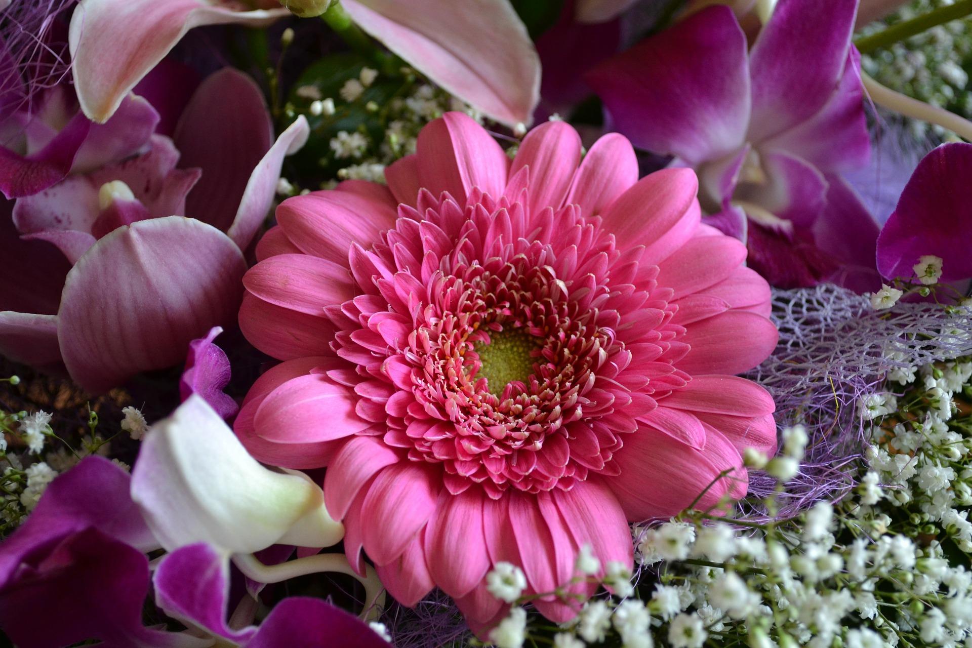 Czy kwiaty online staną się nowym trendem prezentowania?