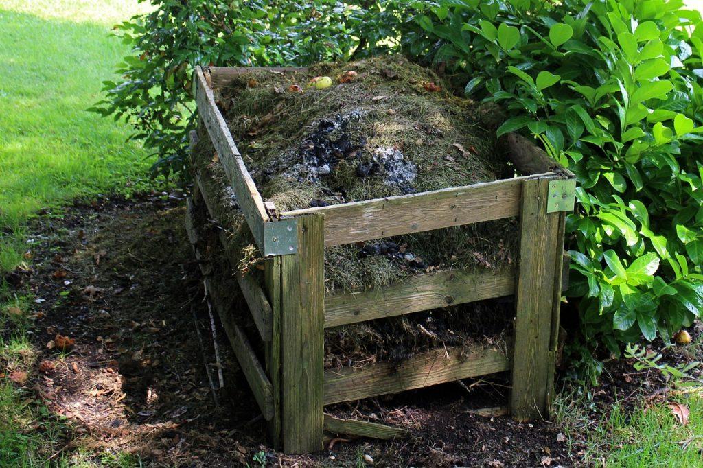 Trawnik i kompost