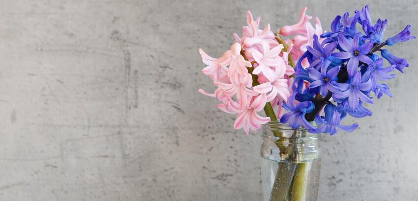 Kwiaty w wazonie - jak o nie dbać