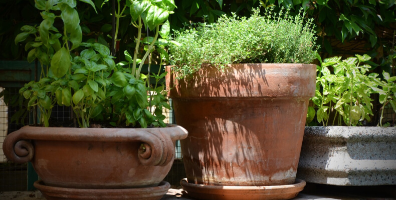 dodatki do ogrodu prowansalskiego