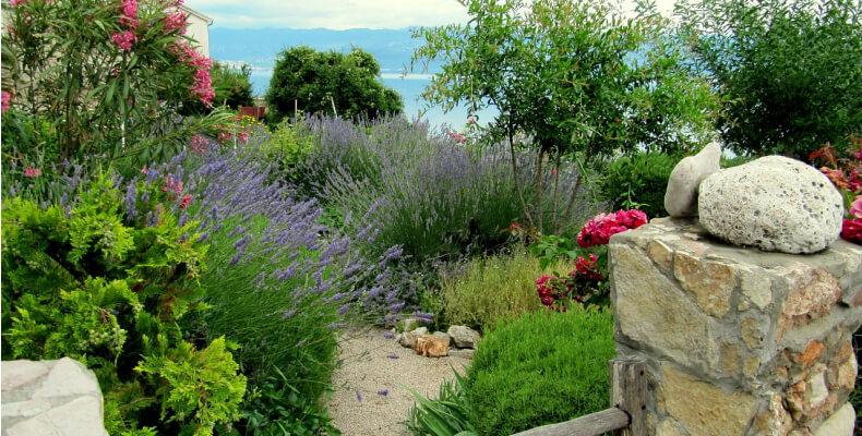 aranżacja ogrodu w stylu prowansalskim