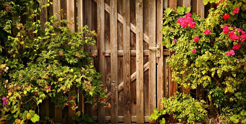 jak stworzyć ogród wiejski