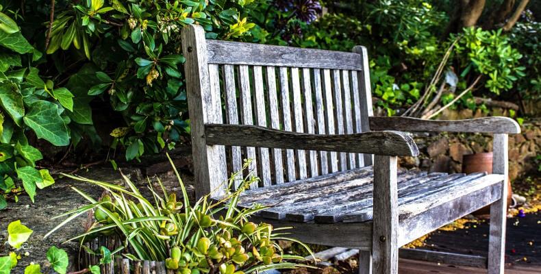ogród prowansalski aranżacja