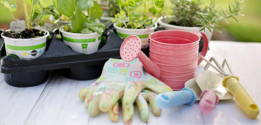 Rękawiczki dla ogrodnika