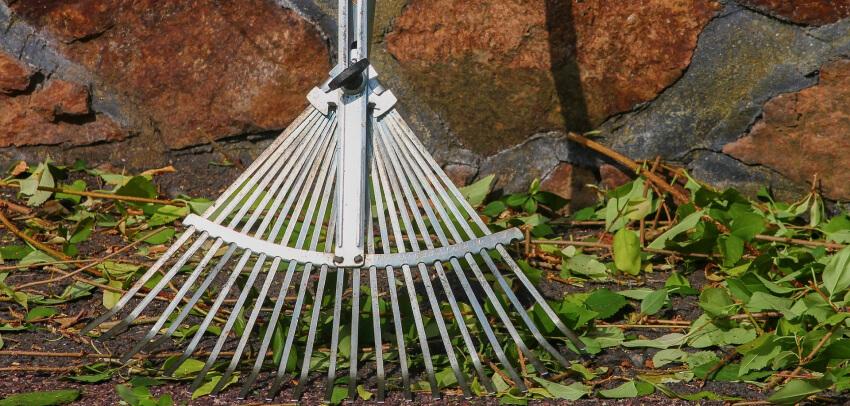 Grabienie trawnika - podstawowe narzędzia