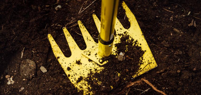 Motyka - jak pozbyć się chwastów w ogrodzie