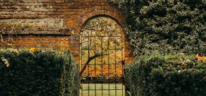 Jak zadbać o ogród jesienią