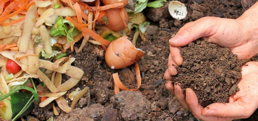 Wiosenne nawożenie - kompost - nawozy organiczne
