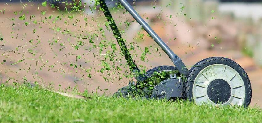 Wiosenne nawożenie - wiosenne nawożenie trawnika